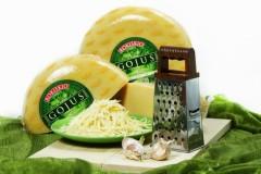 Великолепный сыр Гоюс: экологически чистый и невероятно вкусный