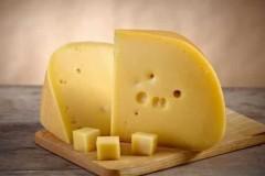 Технология производства голландского сыра и особенности продукта