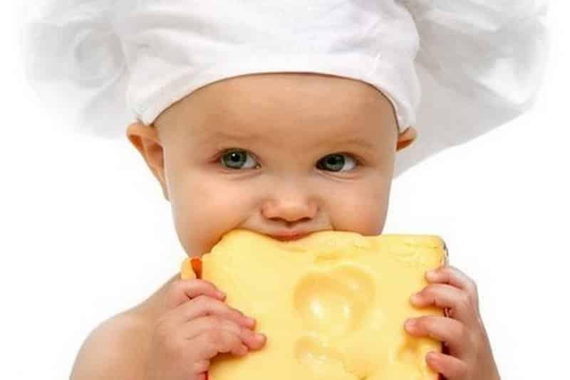 Как ввести сыр в прикорм