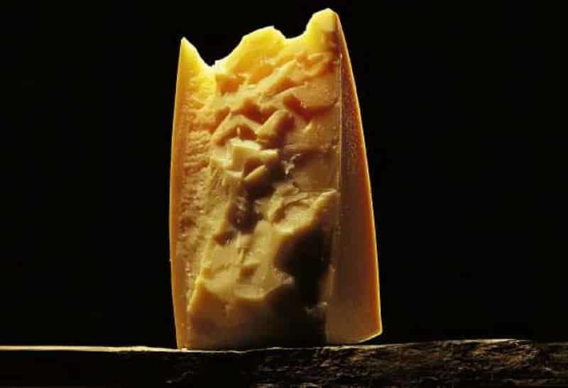 сбринц сыр