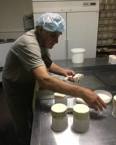 лучшие курсы сыроварения